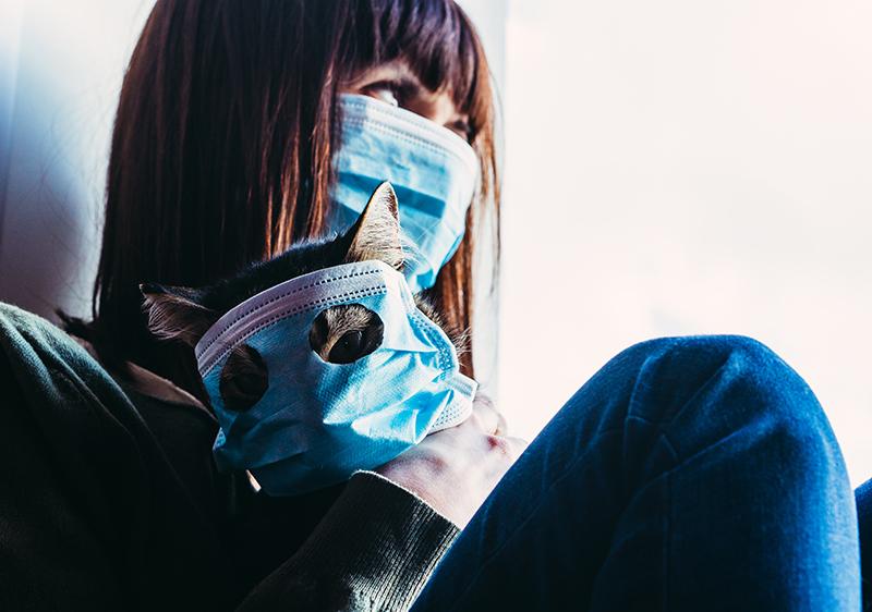 экзамен ДипИФР коронавирус