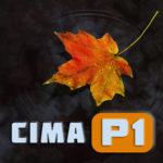 Логотип группы (CIMA P1, ноябрь 2018)