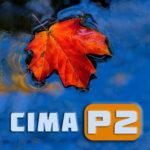 Логотип группы (CIMA P2, ноябрь 2018)